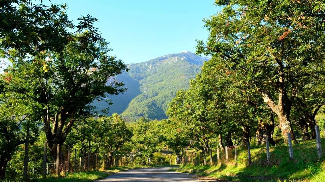 Profumi di autunno tra i Monti Picentini.